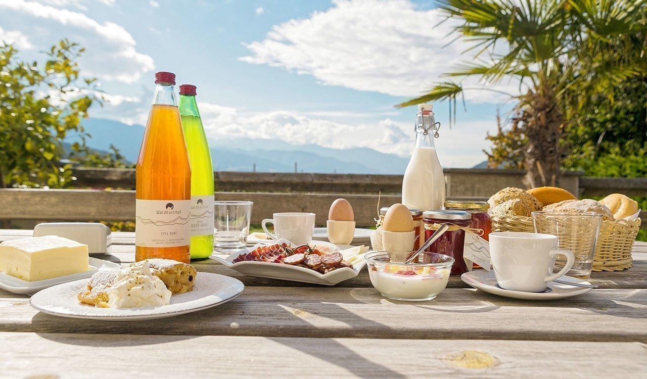 Farm holidays with breakfast