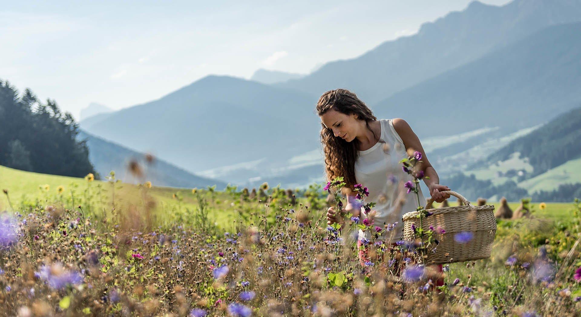 Lieblingsplätze am Waldharthof in Südtirol