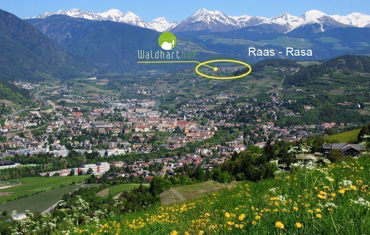 Raas in Südtirol: So finden Sie uns!